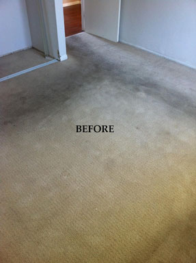 Super Steam Carpet Cleaning before and after photos
